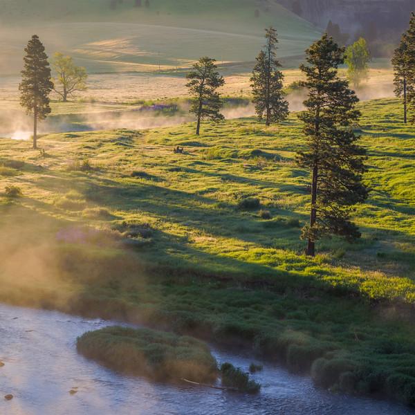 Foggy Sunrise over Palouse River, Summer