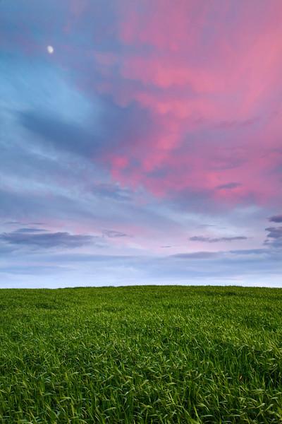 Palouse Springtime Moonrise
