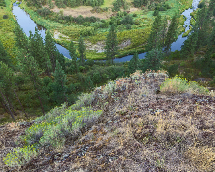 Palouse River Bend and Cliff, Summer