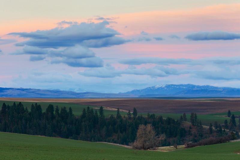 Dawn Light over Prairie