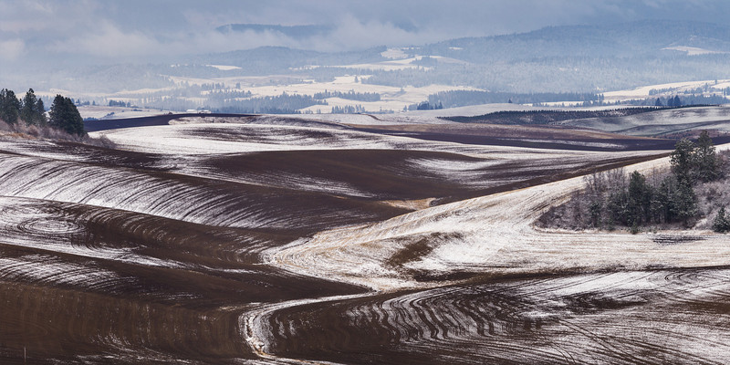 First Snow, Idaho Palouse