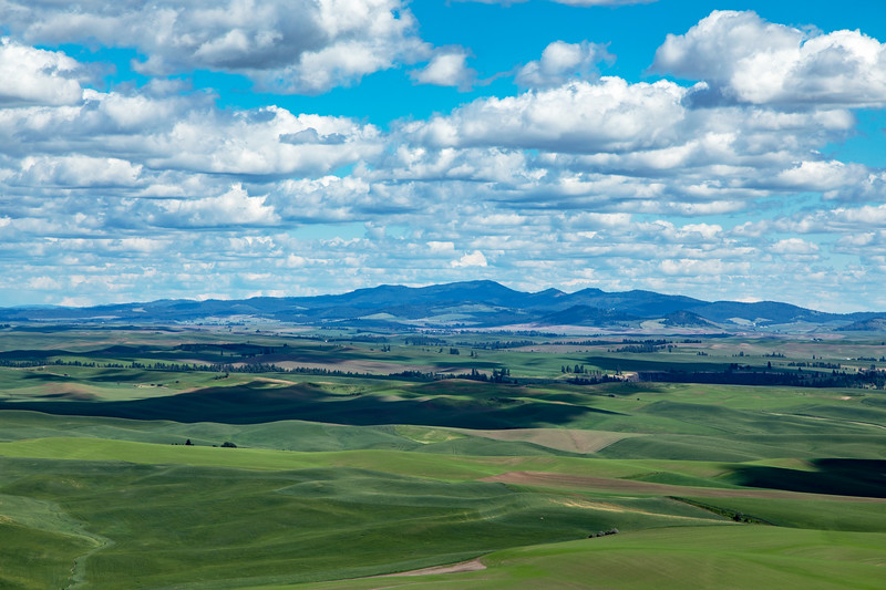 Wide Angle from Steptoe Butte