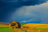 Abandoned Barn Squall Line, Palouse, Washington