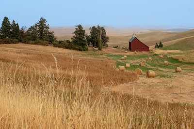 The Palouse (WA) and Painted Hills (OR)