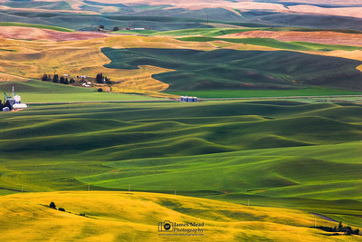 """Patchwork Hills,"" the Palouse, Washington"