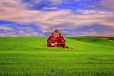 """The Watchman of Palouse Country,"" Palouse Country Barn, the Palouse, Washington"