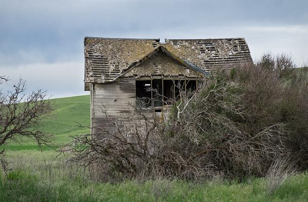 Abandoned farm house - view3