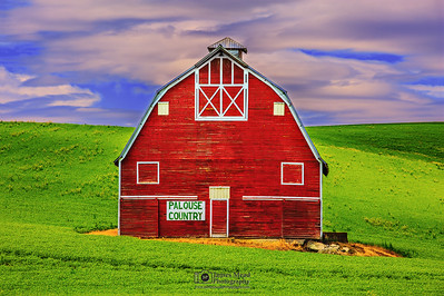 """Palouse Country Guardian,"" Palouse Country Barn, the Palouse, Washington"