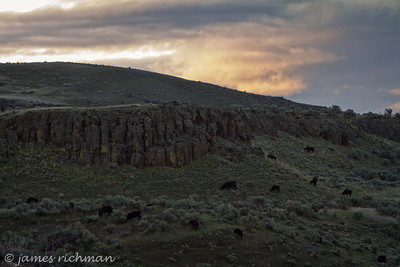 April 5 (Palouse Falls 7D) 039-Edit