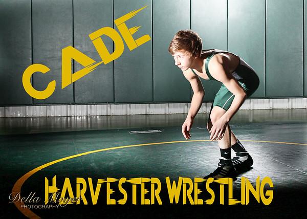 Cade2
