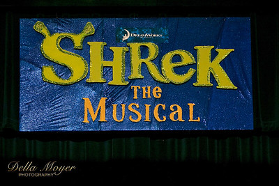 Shrek Act I 2018