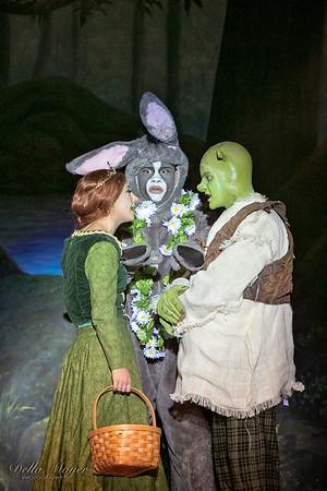 Shrek Act II 2018