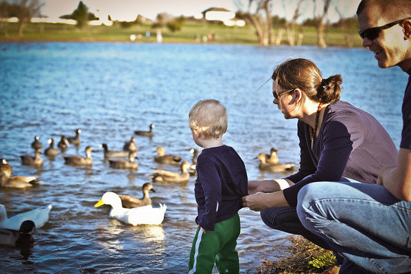 Collin Feeding Ducks 1.29.12