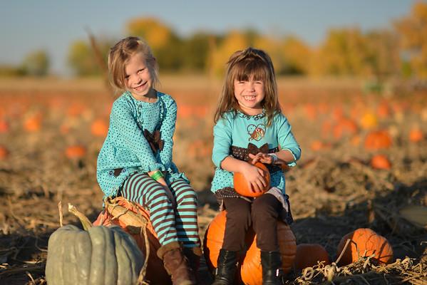 2012 Pumpkin Patch