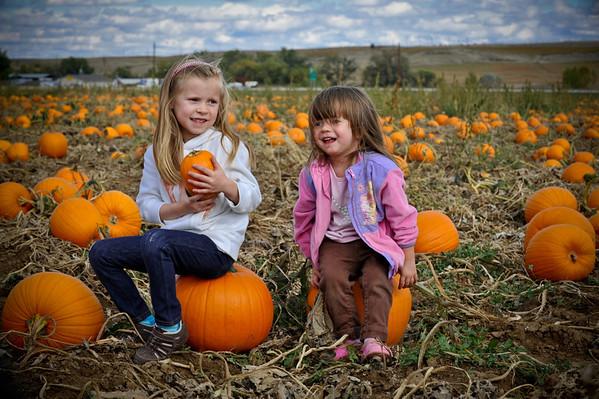 Pumpkin farm 10.9.11