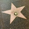 "Then a stroll down the famous ""Hollywood Walk of Fame""."