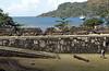 Portobelo Bay