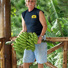 Richard with a bunch of our really tasty bananas. The banana grove is directly behind him, to right.