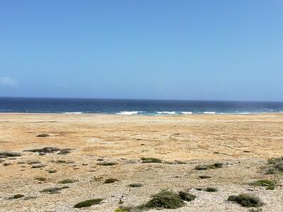 Aruba (33)
