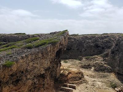 Aruba (31)