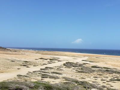 Aruba (34)