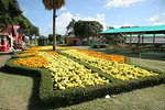 Boquete Fairgrounds : The fairgrounds just across the river from the central town square is host to the huge annual Feria de las Flores y del Cafe (Flowers and Coffee Festival). This internationally acclaimed festival is held in mid-January, drawing thousands of visitors. On Easter Sunday April 24, 2011 the floral displays and crowds were much smaller, but still very beautiful. Local artists were on hand to sell their hand made native costumes and elegant jewelry, on a delightful sunny afternoon. Boquete is in Chiriqui province, in the northern area of Panama, a short drive from David which is the capital of the province. Hope you enjoy the photos taken while strolling through the grounds.  Jack Hardy