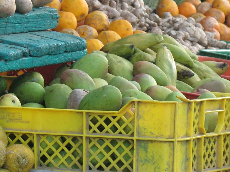 fruit stand in panama