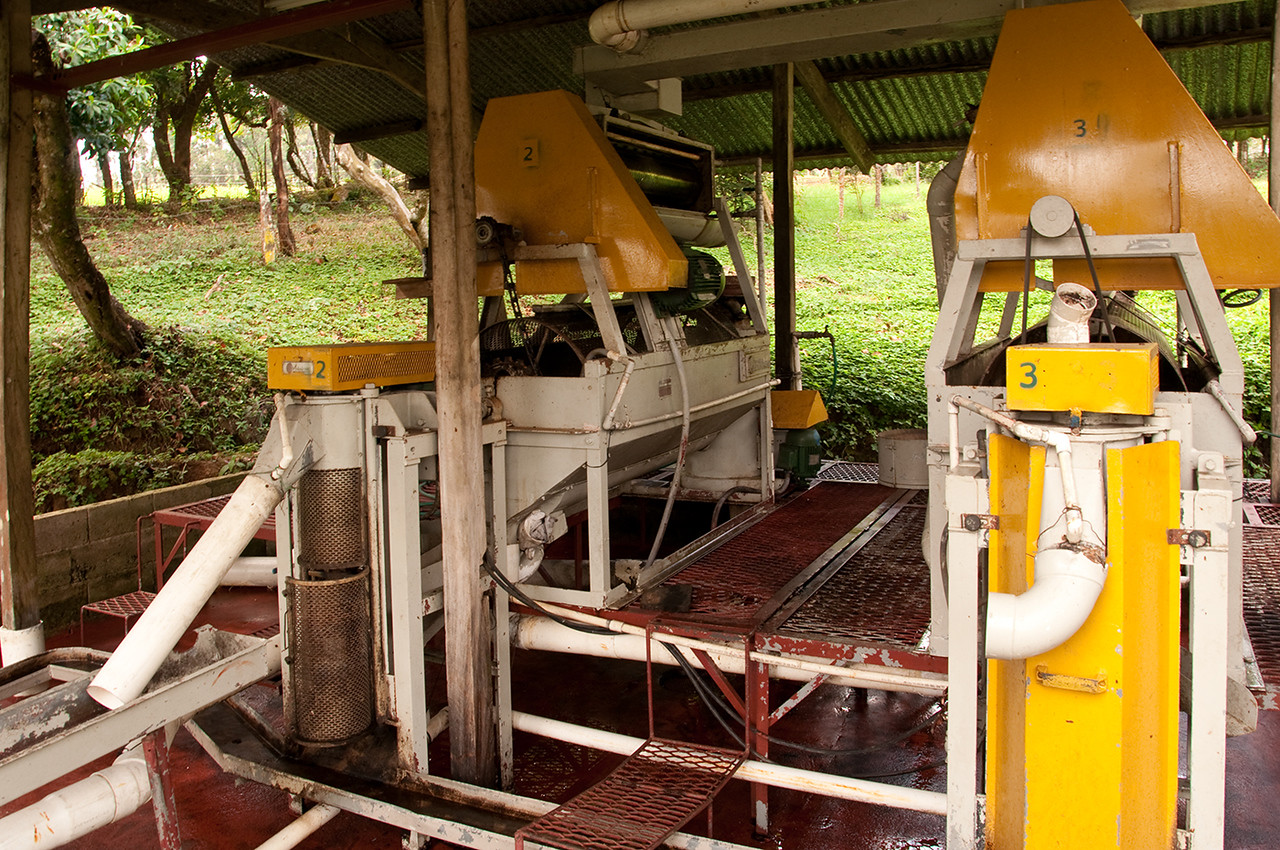The La Esmeralda wet mill.  In back are two separators (high up) which remove the outer fruit.  The beans (seeds) and fruit then pass through a rotary sieve, below, which separates the bulky fruit from the beans. The beans, falling through the sieve, then travel up through a demucilager where turbulence and friction remove the remaining mucilage.  The cleansed beans then pass through the white tubes, in front, to be dried.