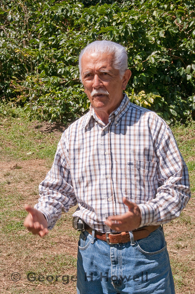 Our last visit was to Francisco Antonio Serracin's and his son, Francisco Jose's Finca Don Pache.  The farm is on the sides of a ravine called Callejon Seco which has a unique microclimate with just under 100 inches per year of rain.