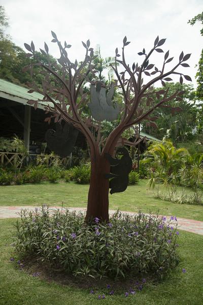 Gamboa Reserve