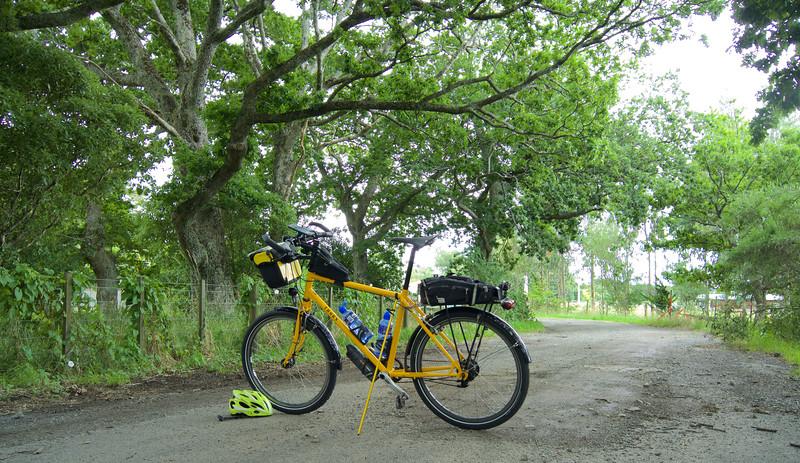 Very near Flux Road, near Managaroa School on an After Nightshift Ride