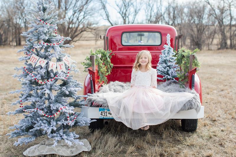 Panigutti Christmas Mini-26