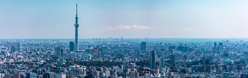 Skytree seen from Ikebukuro