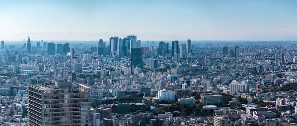 Shinjuku seen from Ikebukuro