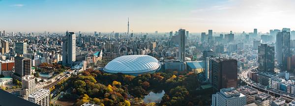 Tokyo Dome , Koishikawa Korakuen and Skytree - For panels up to 550 cm wide.