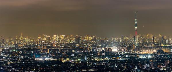 Tokyo Skyline with Skytree