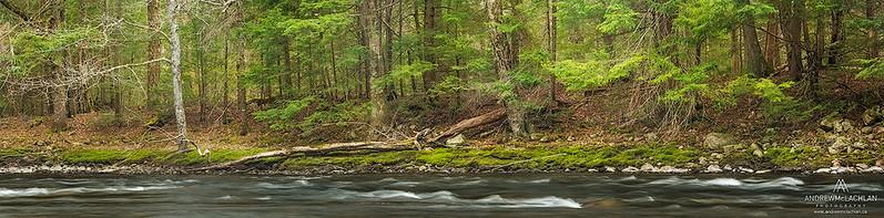 Oxtongue River Panorama, Algonquin Provincial Park, Ontario, Canada