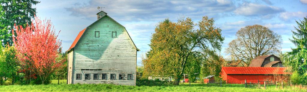 Spring Barn Panorama
