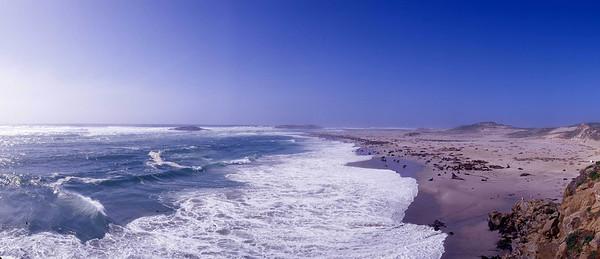 California, Channel Islands National Park, San Miguel Island, Point Bennett