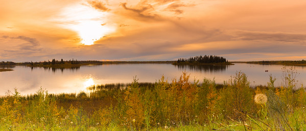Elk Island National Park, Alberta Canada