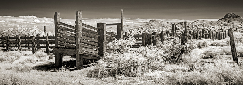Mojave Corral, Searchlight, Nevada.  Nikon D800 Deep IR modified.