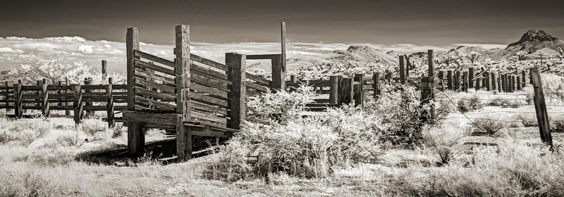 Mojave Corral, Searchlight, Nevada.  Nikon D800 Deep IR modified.