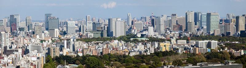 Tokyo Skyline with Shinjuku Gyoen
