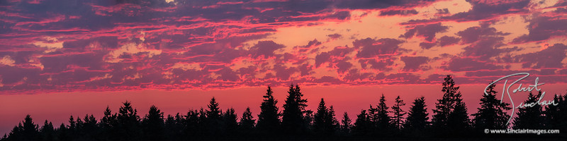 Pink & Blue Sammamish Sunset