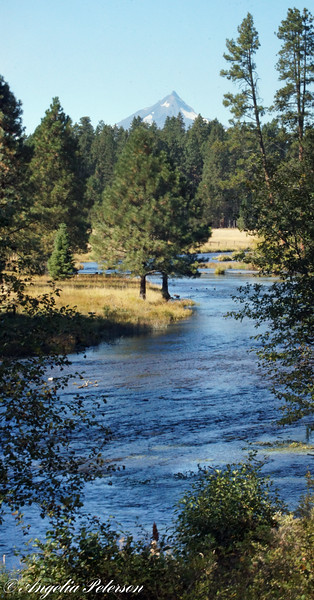 Headwatres of the Metolius River