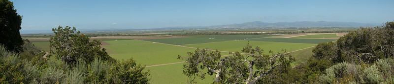 The Salinas Valley (a.k.a. the Salad Bowl) is replete with large fields of row crops.