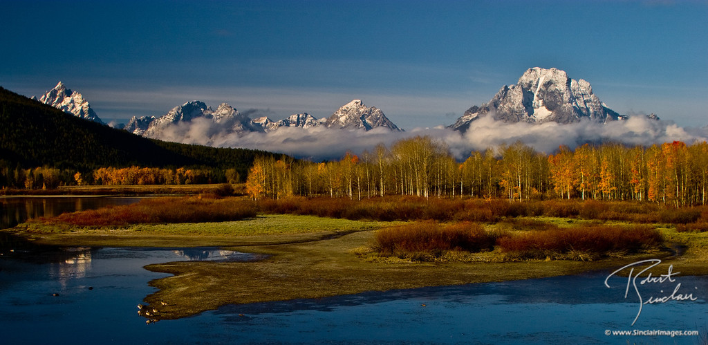 OxBow Bend and Snowy Mount Moran