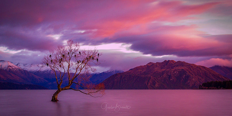 A Morning in Wanaka
