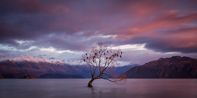 Sunrise at Lake Wanaka