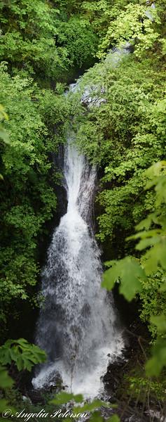 Shaperd's Dell Falls